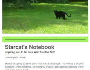 starcatsnotebook